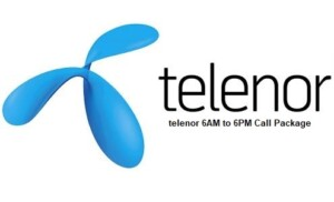 telenor one day 6am to 6pm call package